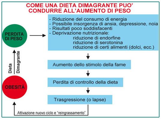 aumento di energia del programma di dieta